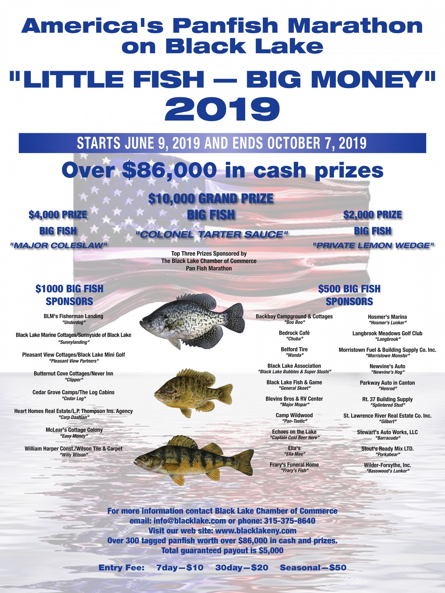 2019_little-fish---big-money