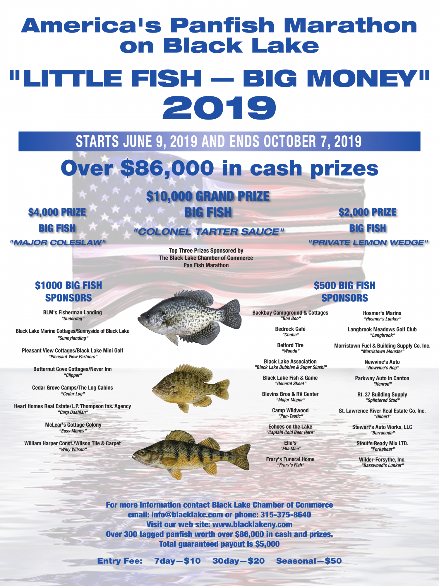 little-fish---big-money